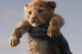Sekuel 'The Lion King' Siap Digarap, Disney Gandeng Sutradara 'Moonlight'