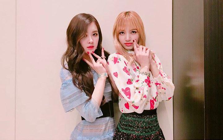 Jadi Model Sampul Dazed Korea Intip Pesona Kecantikan Lisa Dan Rose