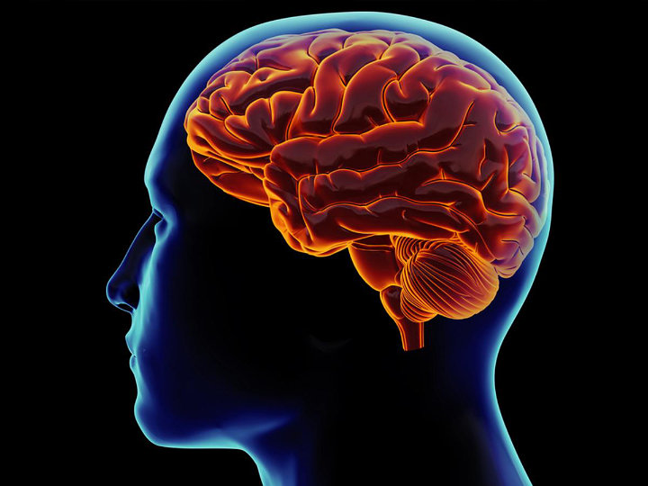 Menurunkan Fungsi Otak
