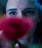 'Beauty and the Beast' Emma Watson Pecahkan Rekor