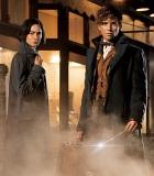 Serunya Eddie Redmayne Buru Monster di Trailer 'Fantastic Beasts'